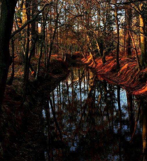 Photography ruud termijn metal art design dutch countryside fandeluxe Image collections